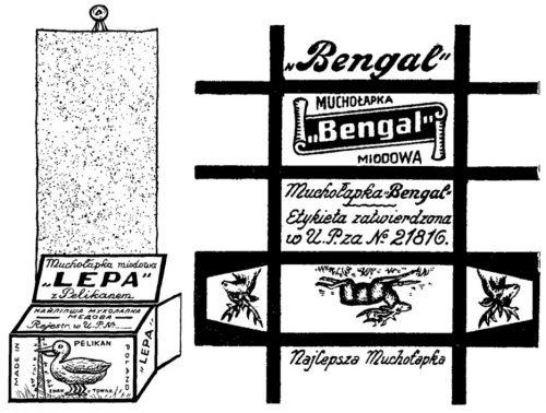 Muchołapki Bengal i Lepa z Lublina