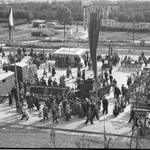Centralna Wystawa Rolnicza, 1954 rok. Fot. Edward Hartwig